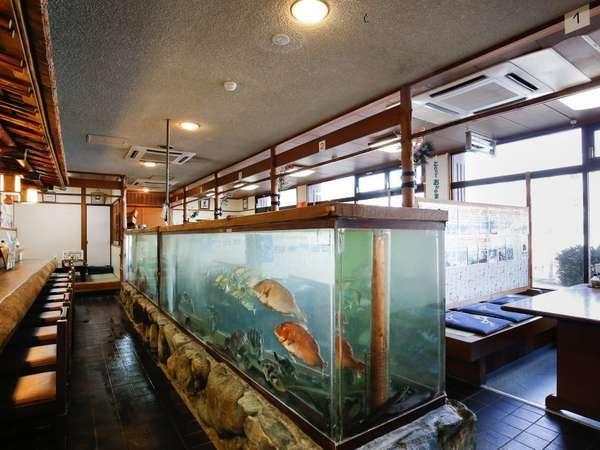 お食事処(生け簀)新鮮な魚がお客様をお迎え致します。