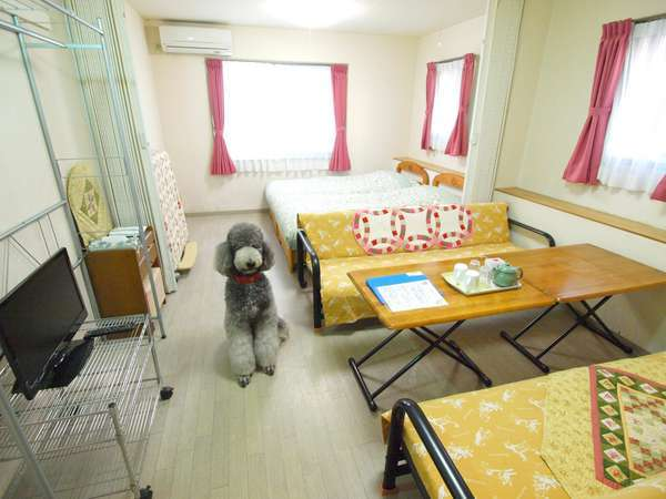 お部屋の様子。各部屋で無線LANが利用可能。