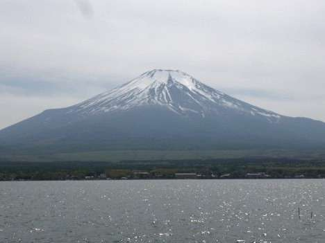 春の富士山です。