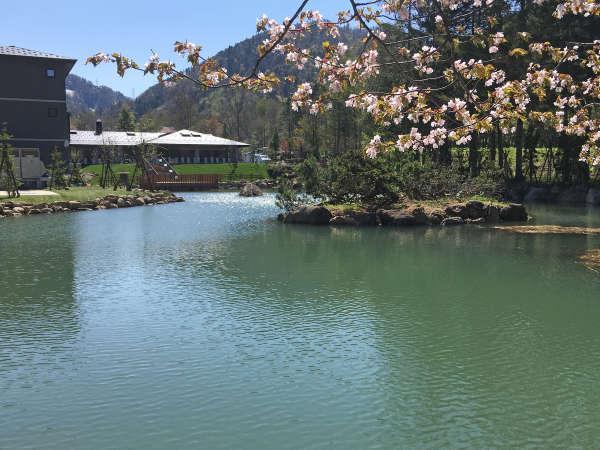【庭園】春・池泉