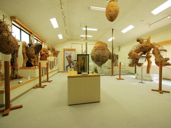 ハチ博物館の館内の様子。ハチ博士こと中川村出身の富永朝和さんの作品が並ぶ。