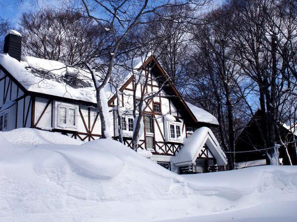 たんばら高原に降る雪