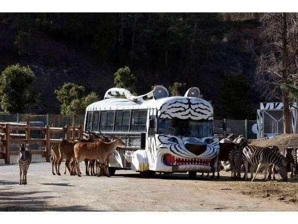 すぐ目の前に野生の動物が!エサやり体験バス
