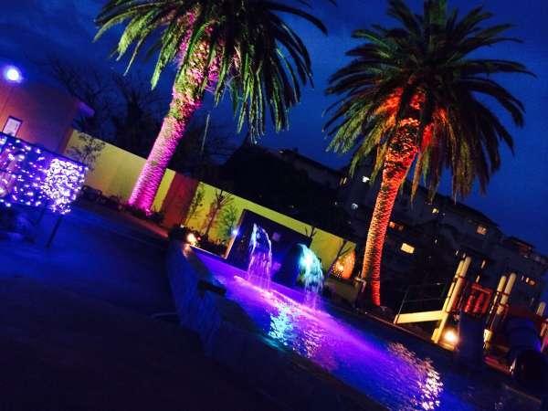 プールを中心とした南国ライトアップを楽しみませんか?