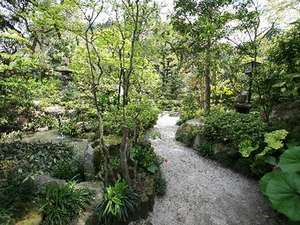 自慢のお庭から、裏の川に続く小道。少し早起きをして散策してみては