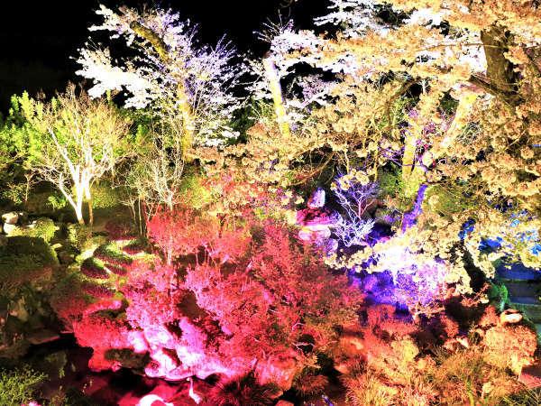 夜は庭をライトアップ♪幻想的な景色でお食事を★