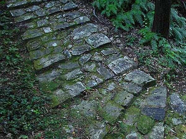 趣のある熊野古道です。世界遺産に登録されており、たくさんの人が訪れます