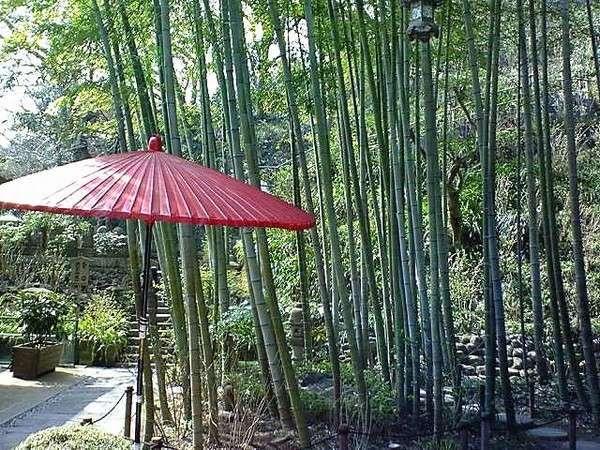 竹寺で有名な報国寺