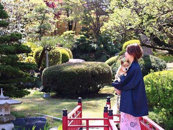 総敷地面積2,700坪。四季の彩りを表現する日本庭園