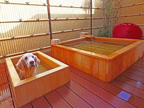 特別室には愛犬専用の天然温泉露天風呂があります