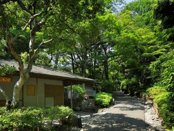 約20,000m2の日本庭園でゆったりと散策をお楽しみいただけます。