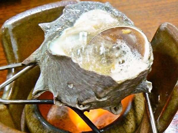 目の前の海岸でとれるさざえのつぼ焼き(夕食一例)