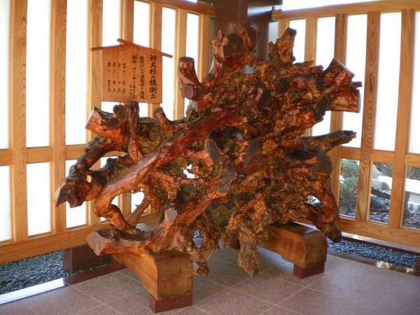 神大杉の根衝立。弥彦で発掘された樹齢400年~500年(室町時代)の衝立。玄関前にございます。