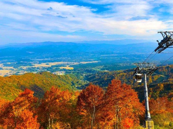 秋写真のイメージです。似たような景色をゴンドラからご覧いただけます。