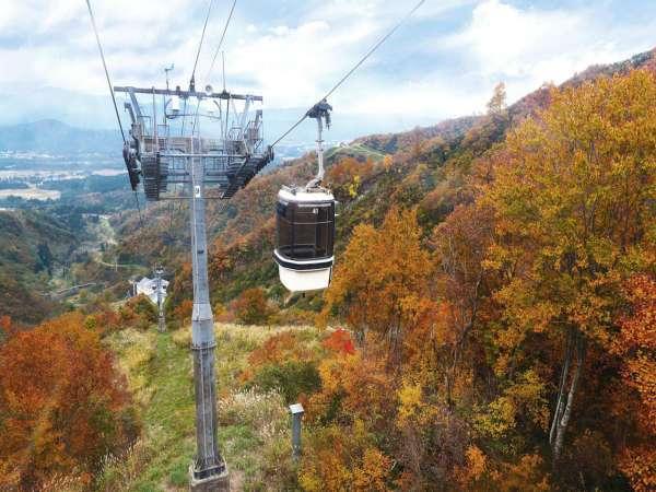 紅葉ゴンドラ21年10月16日~11月14日標高約1000mへ片道約25分の空中散歩。ウォーキングコース新設