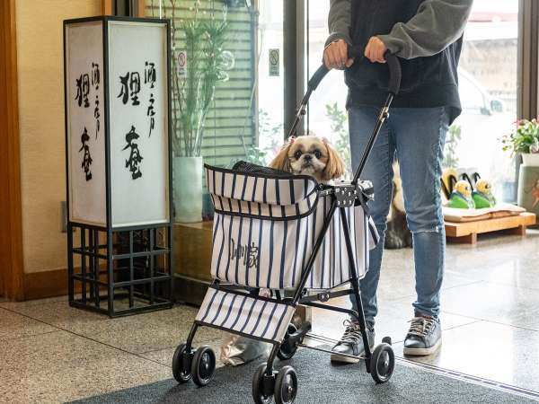 ご到着の際に、ペット専用カートもしくはご持参のゲージにてご移動をお願いしております(抱っこ不可)