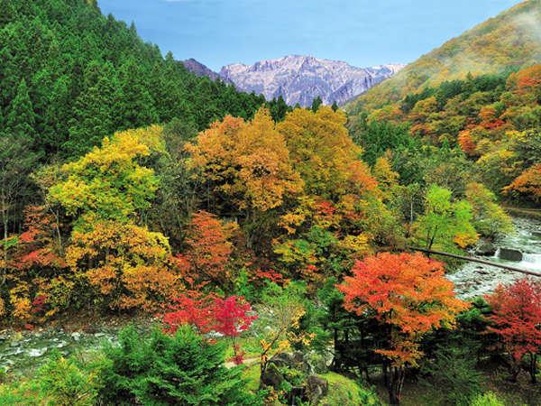 名山「谷川岳」が魅せる四季の美しさ ~秋~