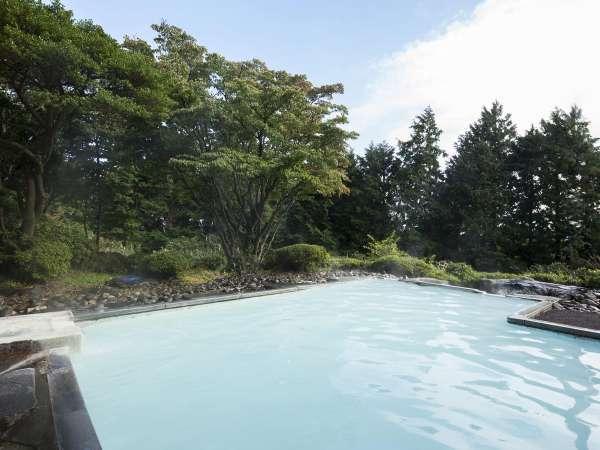 【箱根湯の花プリンスホテル】にごり湯の温泉と季節の日本料理、彩りを添えた和室でのんびり♪