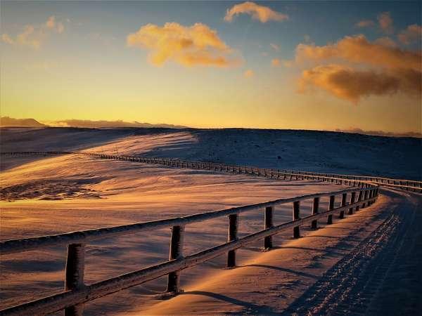 冬の雪上車ツアーで出会える風景