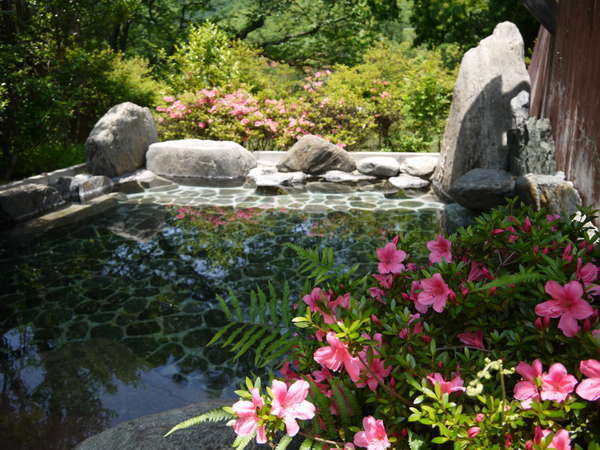 新緑の季節旅館の露天風呂さつきが綺麗です。