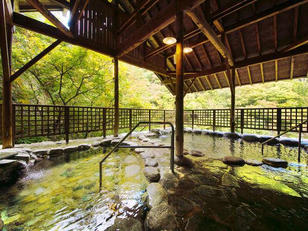 【空中露天】光差す木漏れ日が心地良い。川沿いの景観を楽しめる自然味あふれる空間を。