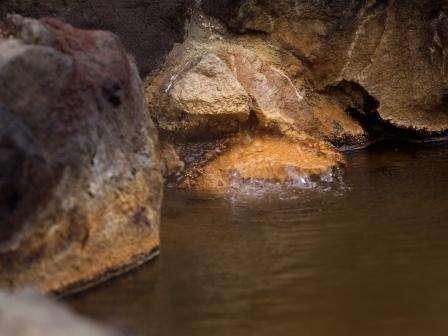 ~源泉100%・完全掛け流し~の天然温泉をご堪能下さい。