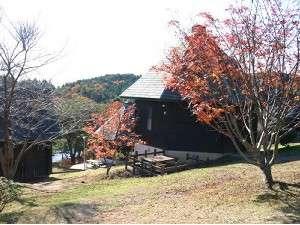 ログハウス周辺の木々の変化が、季節の移り変わりを告げてくれます。