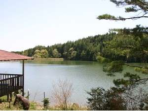 ログハウスは静かな池に面して建つ。鳥のさえずりに、思わず深呼吸。