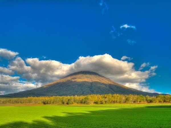 ニセコ夏の景色(羊蹄山)