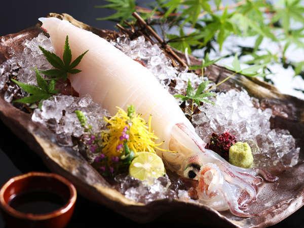 【兵庫県浜坂港産白イカ/イメージ】イカの中では、最高ランクの剣先いかの山陰での呼び名。