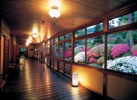 【別所温泉 旅館 花屋】大正浪漫の世界で過ごす至極の時間 文化庁有形文化財指定の宿