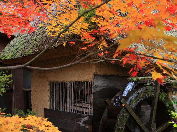秋の水車小屋