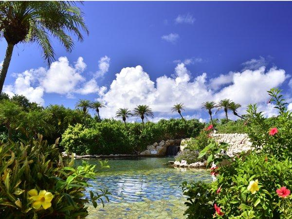 【シギラ黄金温泉(リゾート内)】/水着着用のジャングルプールは温水なので1年中ご利用可能です。