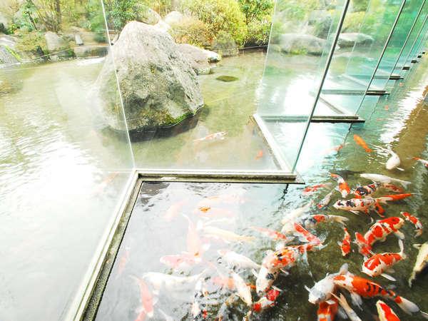*<ロビー>錦鯉が泳ぐ様子を三世代で眺める旅のひと時・・・外国のお客様にも好評です♪