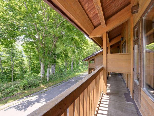 *【特別室】広い窓一面にブナの原生林が見渡せます。