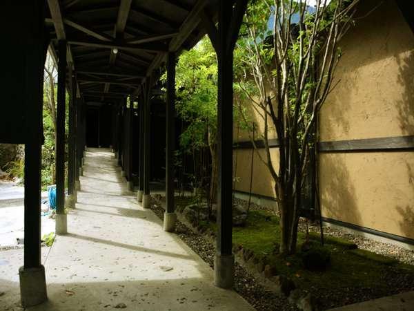 緑が美しい回廊