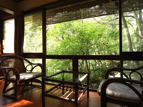 ★四季折々の姿を見せる中庭。どのお部屋からも眺めることが出来ます