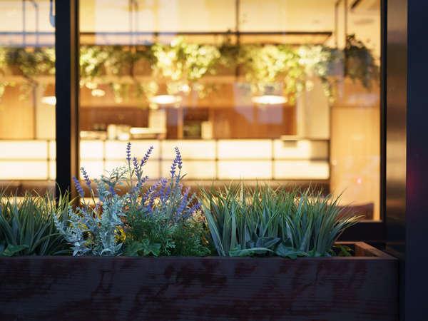 LOHAS【lifestyles of health and sustainability 健康で持続可能な社会を志向するライフスタイル】