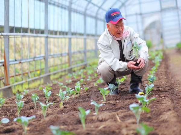 【自家農園】季節ごとに旬の野菜を栽培