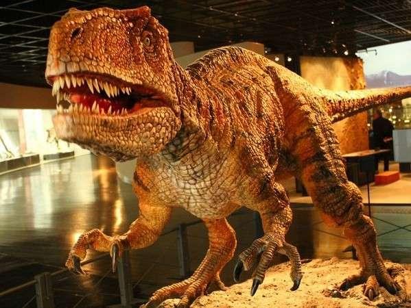 お車で5分の【福井県立恐竜博物館】は、人気NO.1の観光スポット!