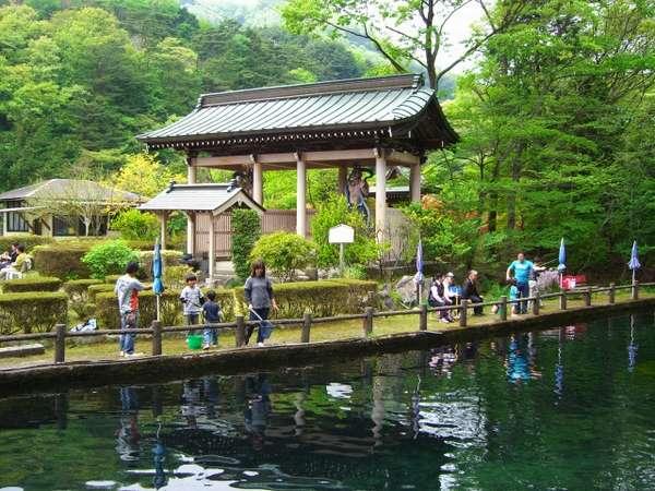 鬼怒川温泉で一番大きな釣堀