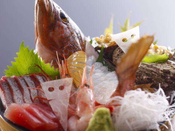 【盛込一例】近海で獲れた魚介は鮮度抜群