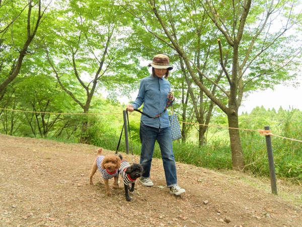 ワンちゃんと散歩を楽しめる遊歩道完備