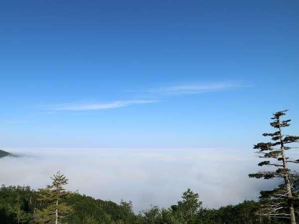 北海道で一番の高所にある温泉宿のため富良野盆地を包む雲海の絶景が観れることも