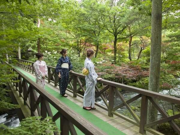 四季の自然を感じる広大な日本庭園