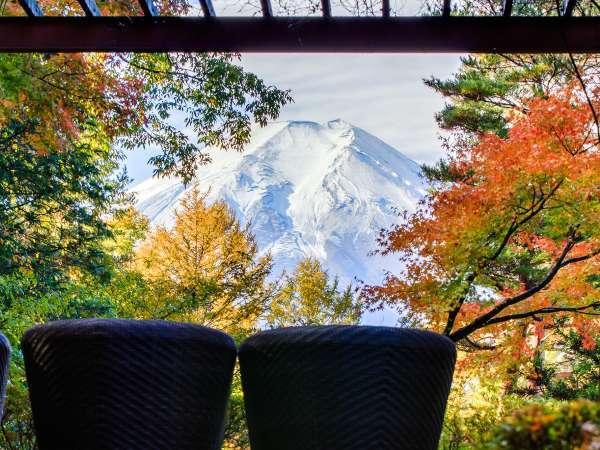 秋の庭園富士の照(テラス)紅葉は10月下旬~11月中旬頃)