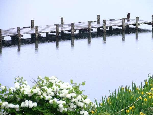 美しい蓼科湖は四季を通して様々な表情を見せてくれます。
