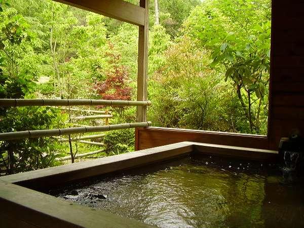 爽やかな山の風景を楽しむことができる男性露天檜風呂
