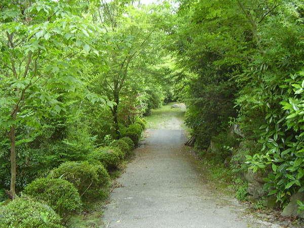 岩寿荘敷地内の川沿いの小路は爽やかな風が気持ちいい♪♪