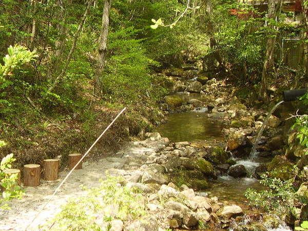 岩寿荘敷地内に流れる清流で水遊びも♪♪